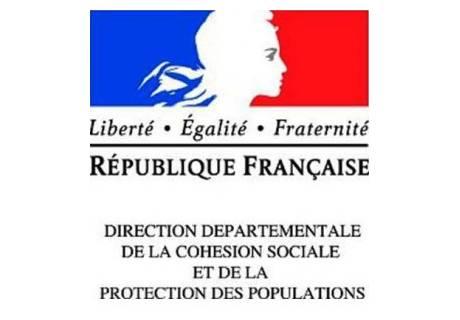 Logo DDCSPP